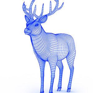 Deer 300 400