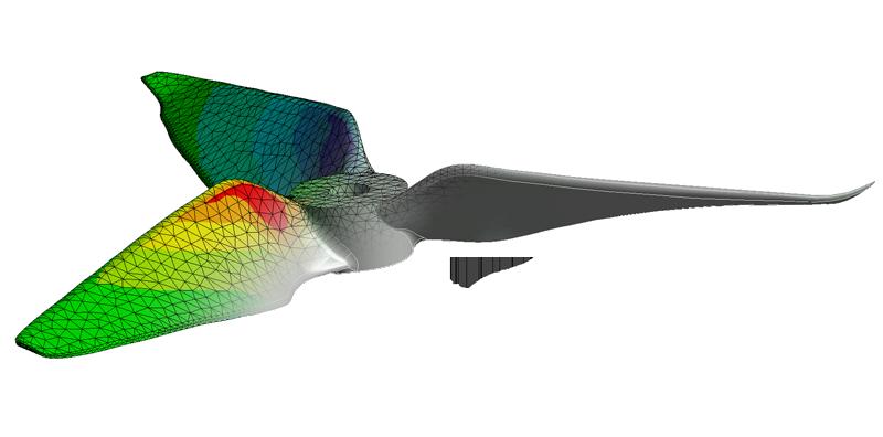 Propeller simulation FEM