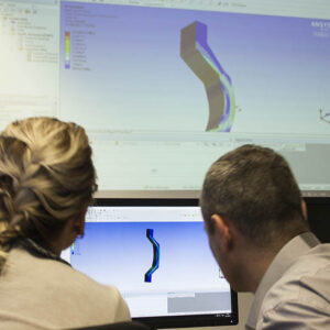 Trainers in FEM ANSYS Workshop