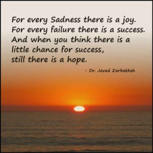 Success Failure Hope Sadness joy Javad Zarbakhsh Quote