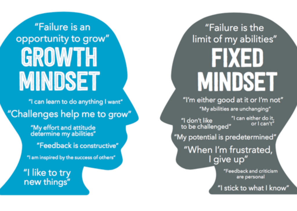 How to cultivate mental agility? 4 concrete steps to build it Agile Mindset vs Growth Mindset Cademix Magazine Article by Karima Aboukal
